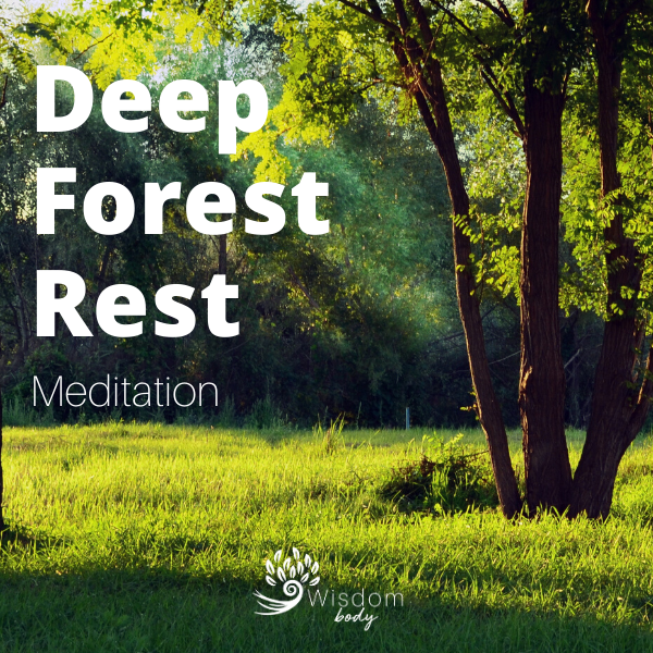 Your Deep Forest Rest Audio